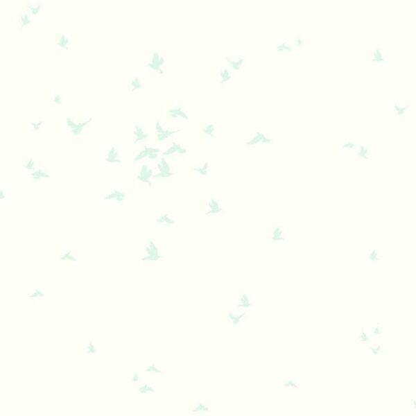 DW2331ex-1.jpg